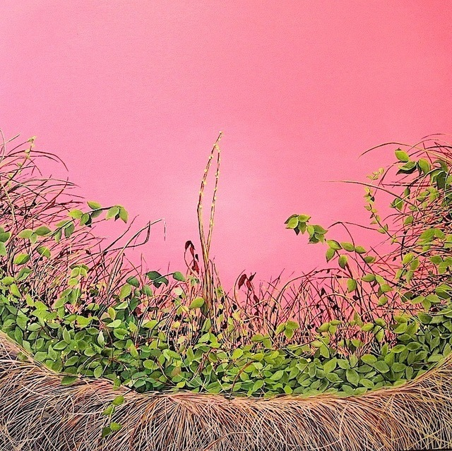 , 'Pink Thicket (Thicket #2),' 2011, Susan Eley Fine Art