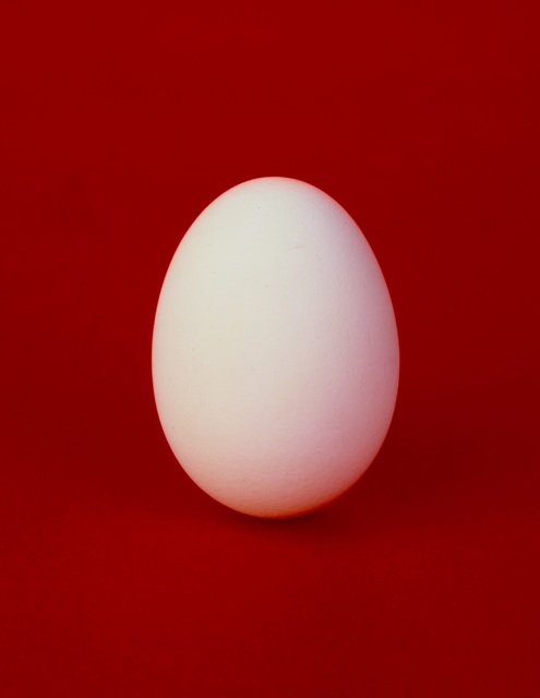 , 'Egg,' 1992, Janet Borden, Inc.