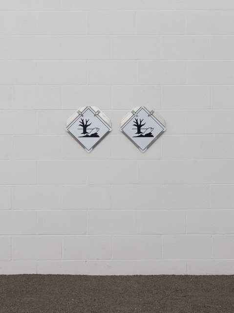 Amy Yao, 'Twins', 2016, VARIOUS SMALL FIRES