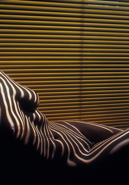 Lucien Clergue, 'Zebra Nude with Venetian Blind, New York, April', 2012, Modernism Inc.