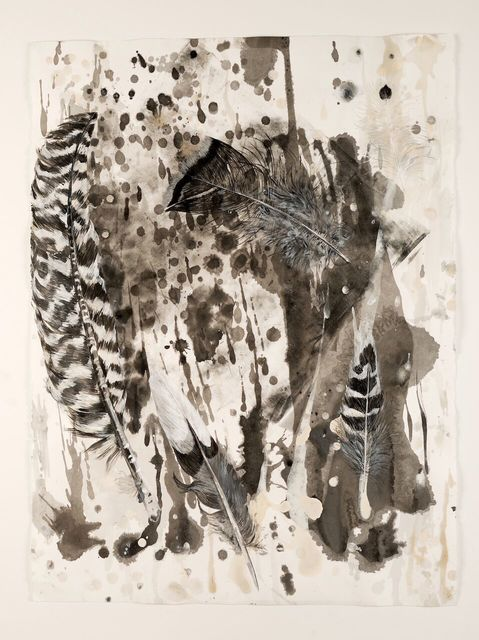 , 'Camouflage Feathers #6,' 2010, Goodwin Fine Art