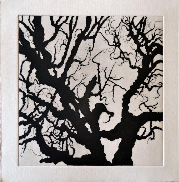 , 'Tree Series: Normana III,' 2011, Ruiz-Healy Art