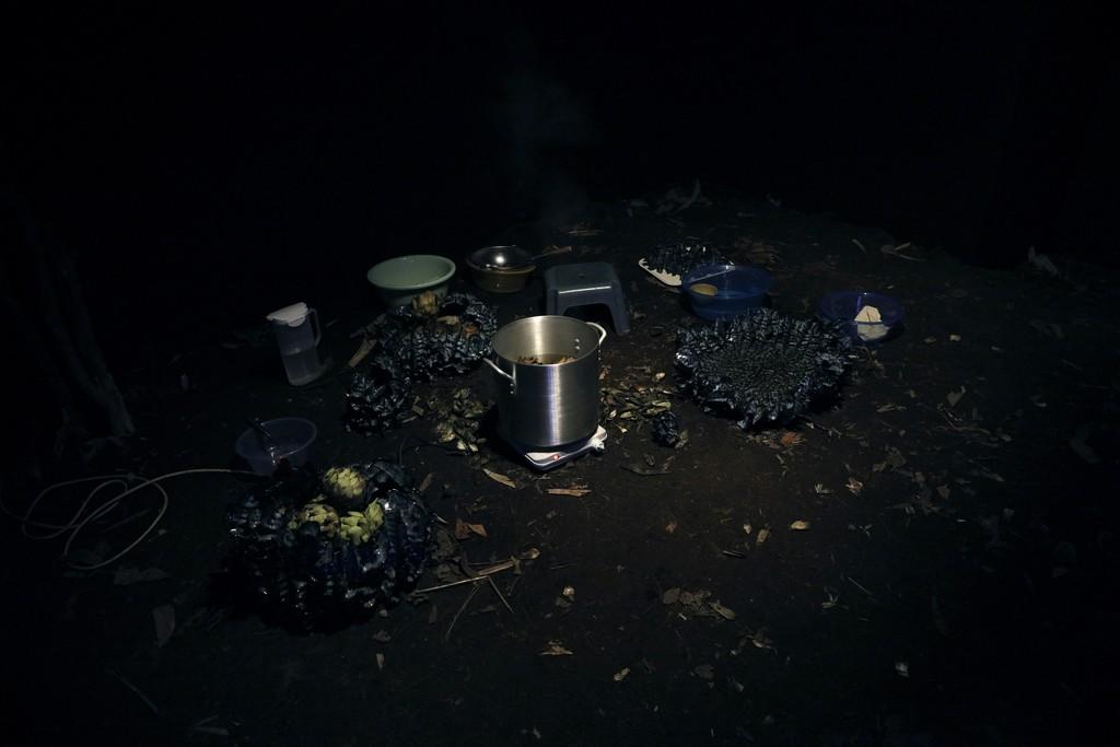 Hans-Henning Korb, Kaya Cynara : Yukti in collaboration with Jonas Wendelin, 2016