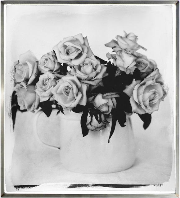 , 'Roses, Overberg II,' 2003, HackelBury Fine Art