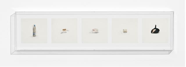 Taryn Simon, 'FAT (PROHIBITED)', 2010, Anna Schwartz Gallery