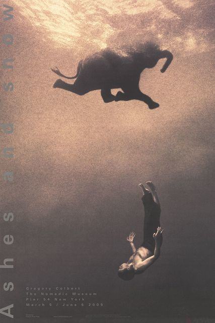 , 'Gregory Swimming with Elephant, New York,' 2005, ArtWise