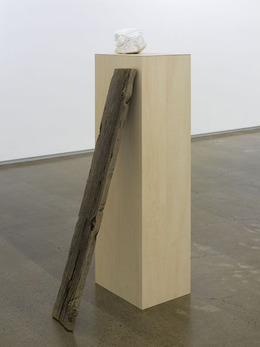, 'reproduction,' 2009, Taka Ishii Gallery