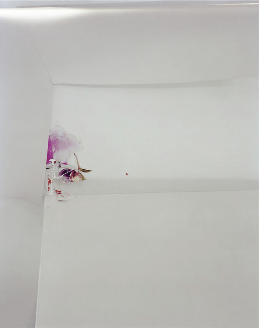 , 'Untitled #46, from the series Ill Form and Void Full,' 2013, Tracey Morgan Gallery