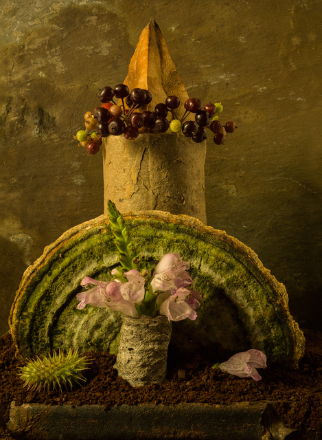Allan Markman, 'Still Life with Mushroom and Berries', Soho Photo Gallery