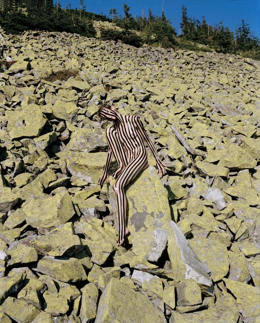 Synchrodogs, 'Untitled (Slightly Altered)', 2017, Galleri Urbane