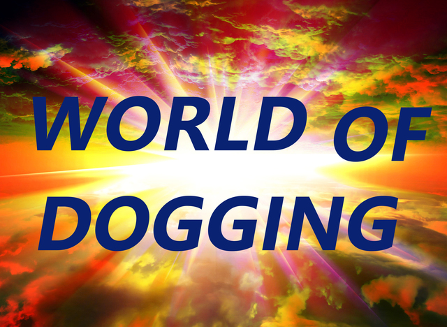 , 'World of Dogging,' 2015, envoy enterprises