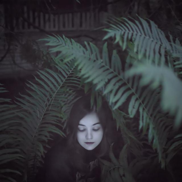 , 'The Ferns,' 2013, photo-eye Gallery