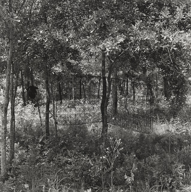 Carrie Mae Weems, 'Untitled (Box Spring in Tree) (from Sea Islands Series)', 1991-1992, Guggenheim Museum