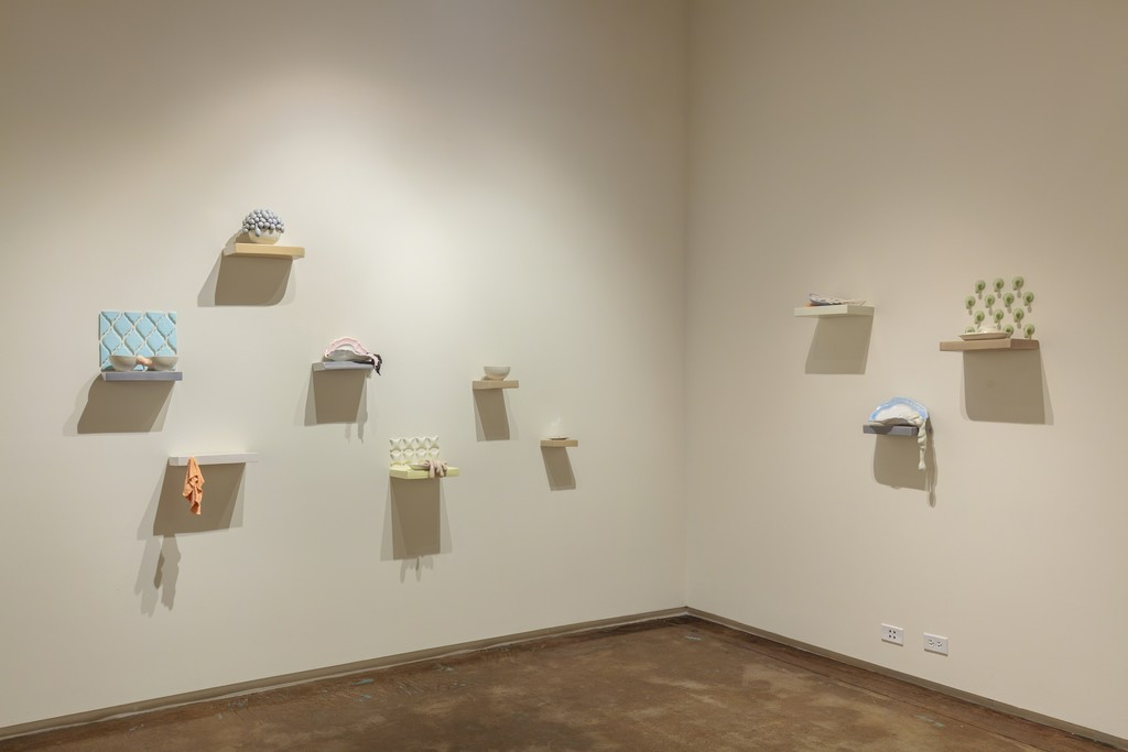 Tsehai Johnson, installation view