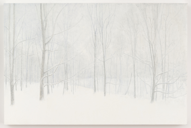 , 'Woods in Winter,' 2017, Elizabeth Harris Gallery
