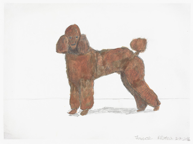 Lance Rivers, 'Untitled (Poodle)', 2016, Creativity Explored