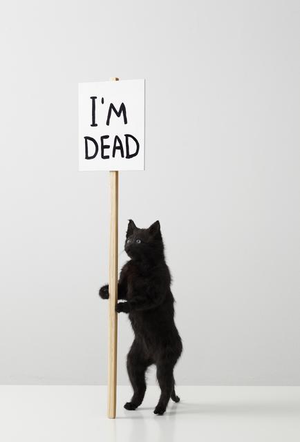 David Shrigley, 'I'm Dead', 2011, Galleri Nicolai Wallner