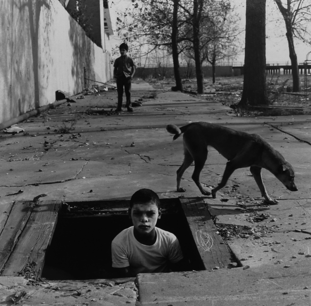 Arthur Tress, 'Two Boys and Dog, Coney Island', 1969, Galerie Esther Woerdehoff