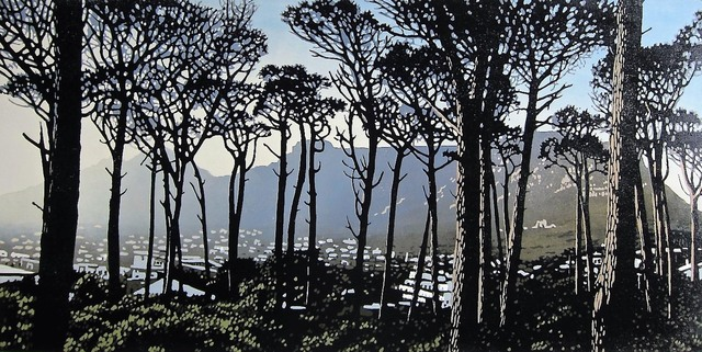 , 'Pines on Kloofnek Road,' 2016, The South African Print Gallery
