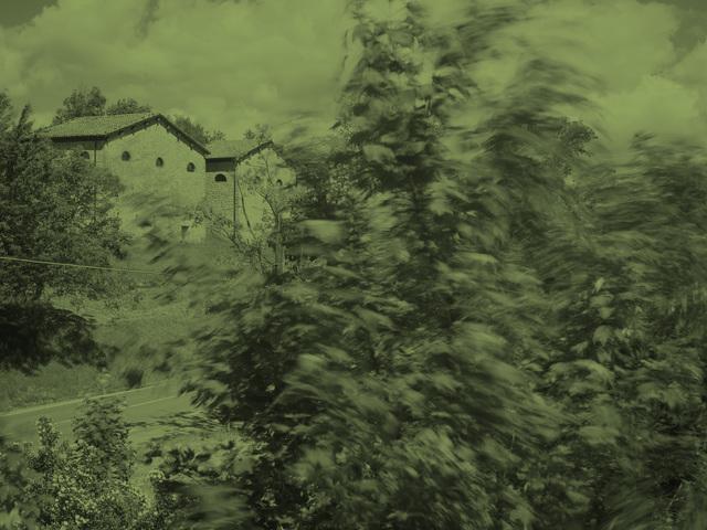 , 'Grizzana Landscape (Green),' 2016, Anglim Gilbert Gallery