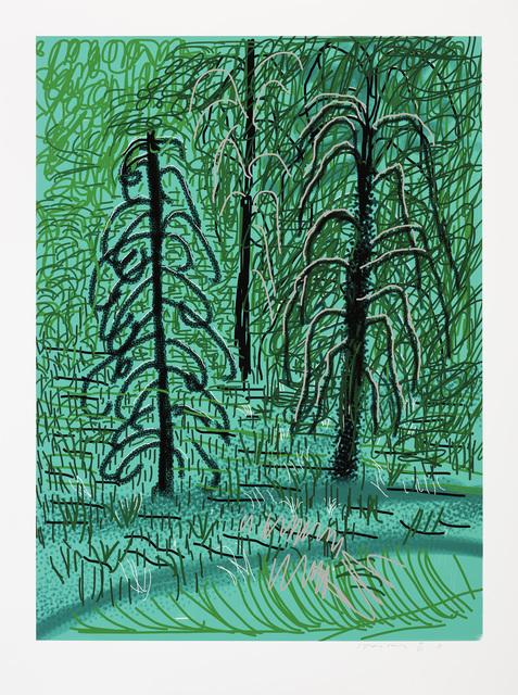 David Hockney, 'The Yosemite Suite No. 16', 2010, Galerie Lelong & Co.