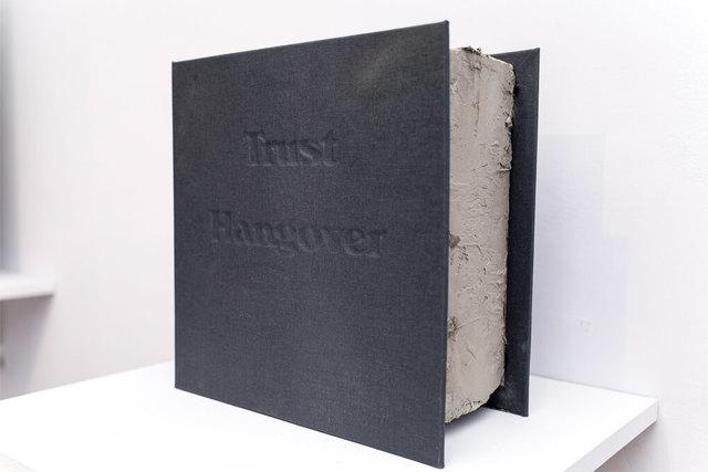 , 'Trust Hangover,' 2016, Casa Nova Arte e Cultura Contemporanea