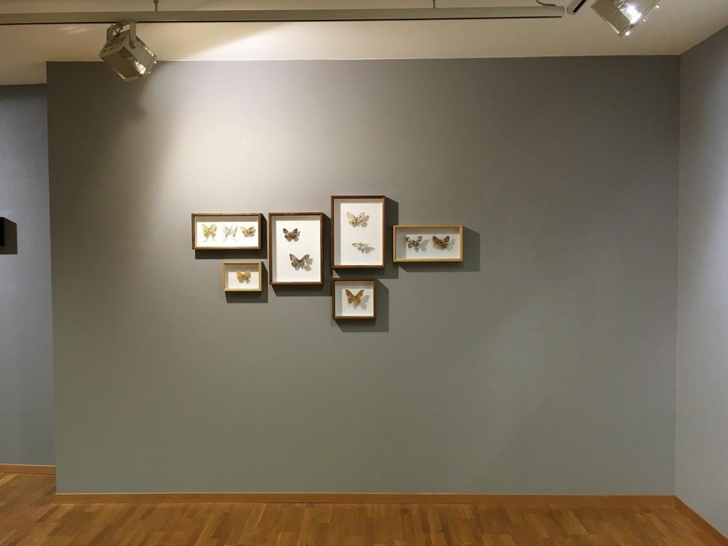 Akihiro Higuchi Installed works