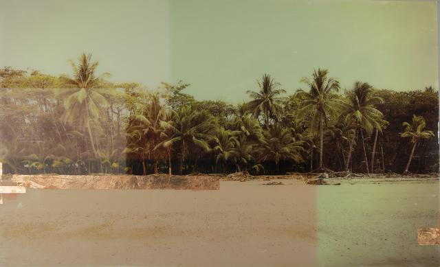 , 'Costa Rica Palms,' 2018, Kahn Gallery