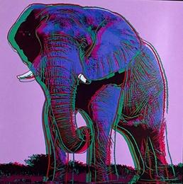 Elephant for Art Basel