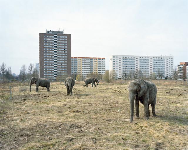 Mitch Epstein, 'Lichtenberg, Berlin from the series Berlin', 2008, Yancey Richardson Gallery