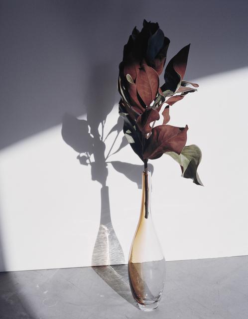 , 'Magnolia,' 2016, PARISIAN LAUNDRY