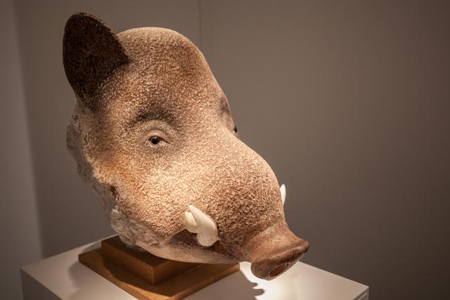 , 'Wild Boar's Head,' 2003, Galerie Dumonteil