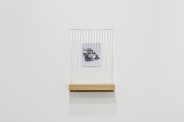 , 'Dispositivo per non vedere bene - Lupa #3, Bologna ,' 2017, MATÈRIA