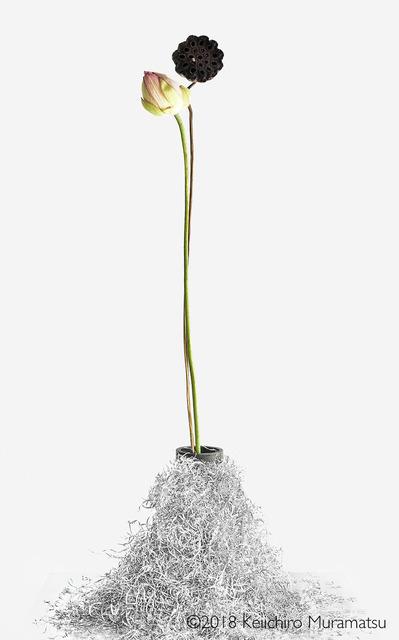 , 'Lotus 1,' 2018, Galerie Marie-Robin