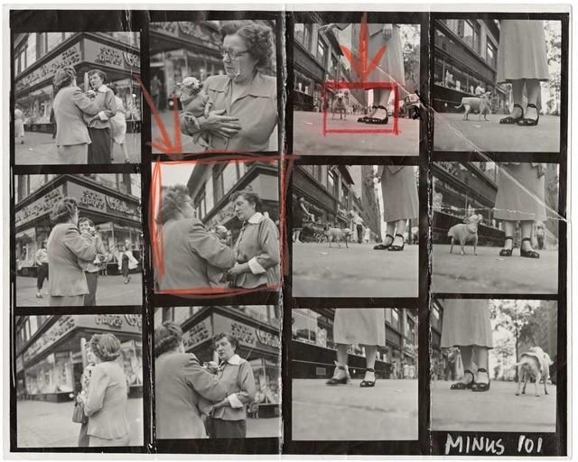 Elliott Erwitt, 'Chihuahua (New York City)', 1946, Magnum Photos