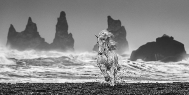 David Yarrow, 'White Horses ', 2018, Photography, Archival Pigment Print, Tres Hombres