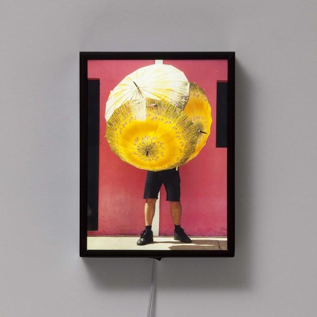 , 'Portrait Bicho da Seda Amarelo,' 2014, Carbono Galeria