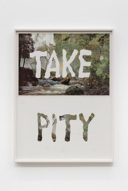 , 'Take Pity,' 1998, Croy Nielsen