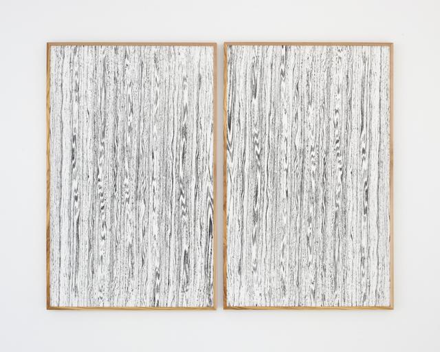 Lisa Oppenheim, 'Landscape Portraits (Olive) (Version I), 2015 Two silver gelatine photograms in unique frames  ', 2015, Galerie Juliètte Jongma