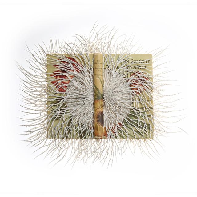 Barbara Wildenboer, 'Dark Paradise II,' 2013, Seager Gray Gallery