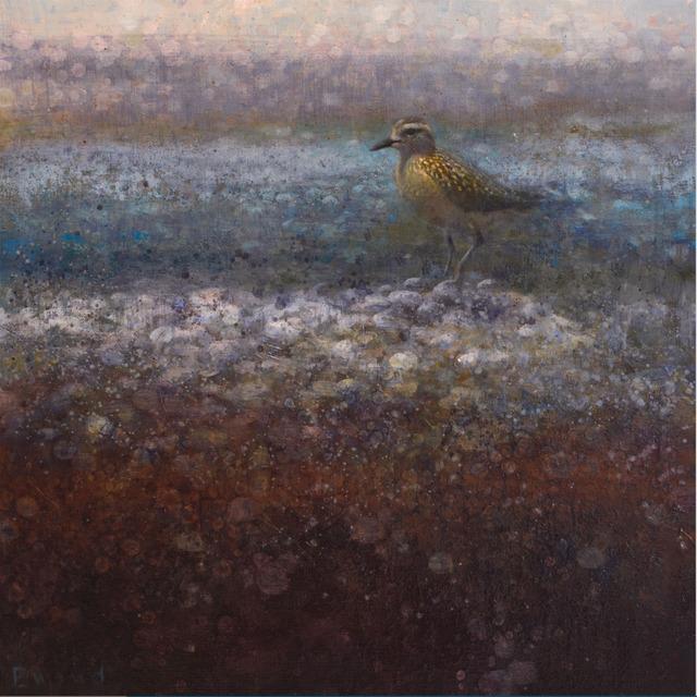 , 'Golden Plover,' , Stremmel Gallery