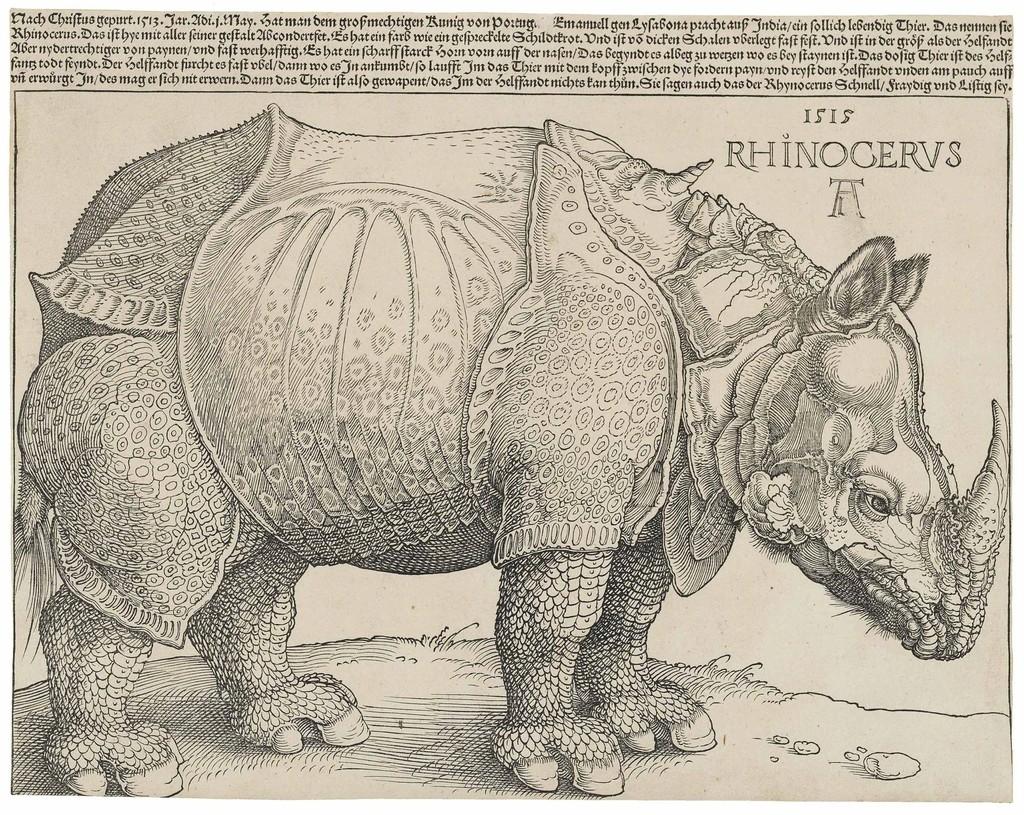 The Rhinoceros (B. 136; M., Holl. 241; S.M.S. 241)