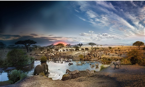 , 'Day to Night, Serengeti National Park,' 2015, Tulla Booth Gallery