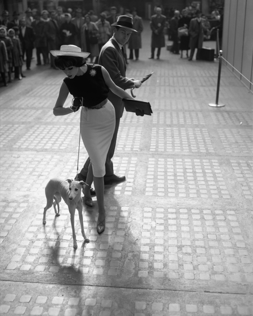 , 'Simone D'Aillencourt with Whippet, Penn Station,' ca. 1959, Staley-Wise Gallery