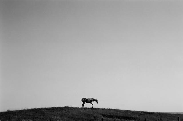 , 'Real Mirage,' 2011, Nina Johnson