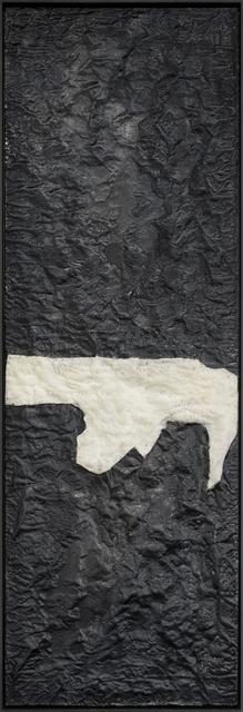, 'Tierra del Fuego ,' , Galerie Laurence Bernard