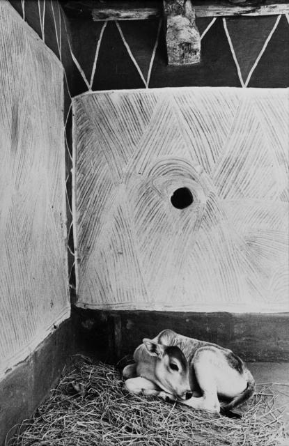 , 'Interior of a Rajawar tribal house, Madhya Pradesh,' 1983, Tasveer