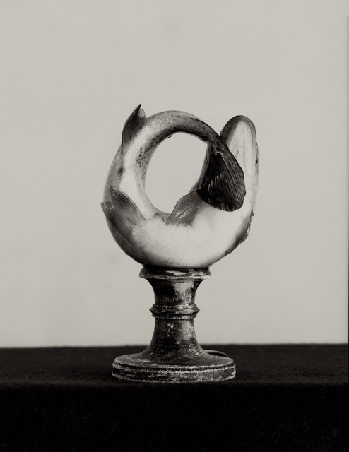 Zoë Zimmerman, 'Fish #2', 2005, Photography, Albumen, photo-eye Gallery