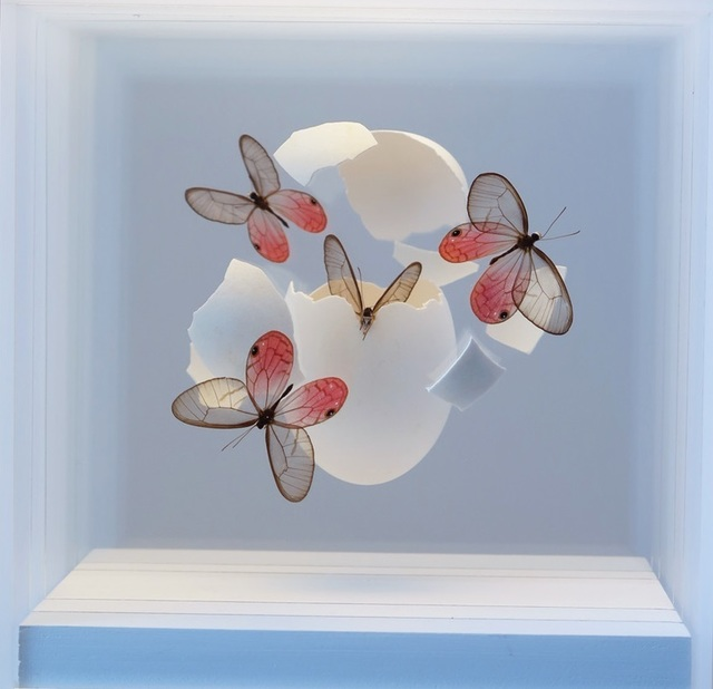 , 'Oeuf avec papillons,' 2018, Villa del Arte Galleries