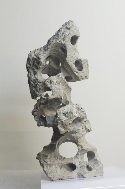 , 'Qian Chuang Yuan#17 千創園#17,' 2012, Galerie du Monde
